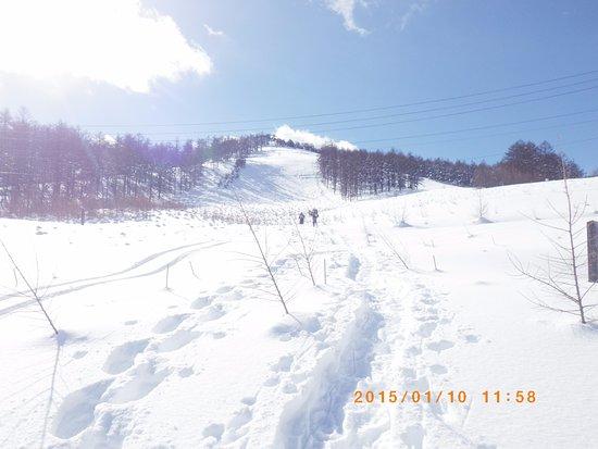 Wada Pass