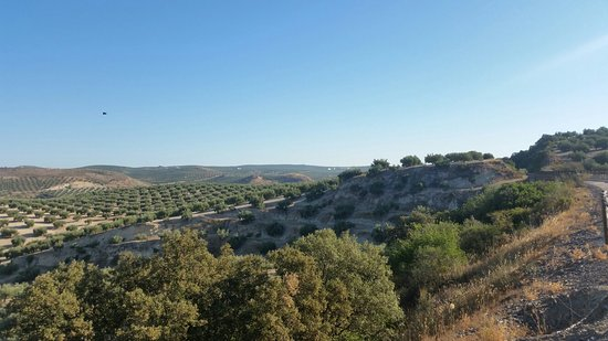 Alcaudete, Spanien: 20160823_093104_large.jpg