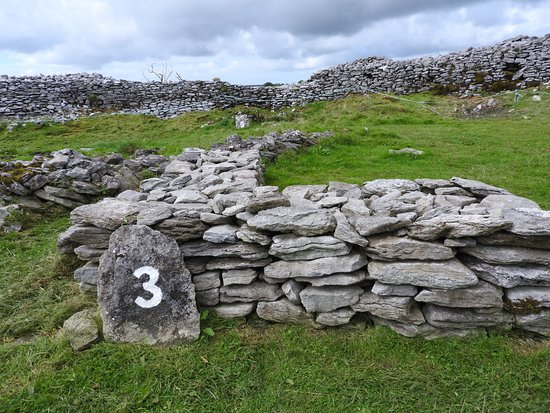 Caherconnell, Irlande : Each spot listed in the write up is identified on the walk by a large number like this one
