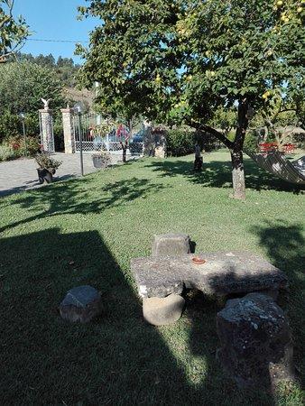 Panta Rei : Il giardino....