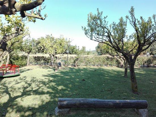 Panta Rei: Il giardino....