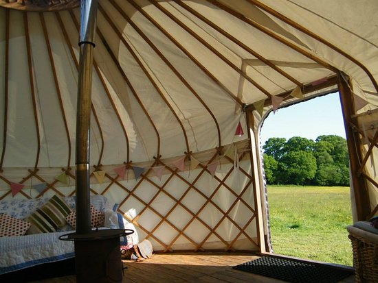 Ottery St. Mary, UK: The view from a yurt at Cuckoo Down Farm