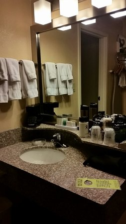 BEST WESTERN Plus Butte Plaza Inn: Room and counter/bath