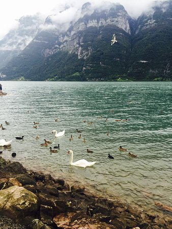 Flumserberg, Szwajcaria: photo1.jpg