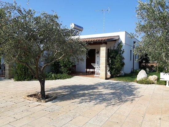 Residence Gli Ulivi : 20160827_091220_large.jpg