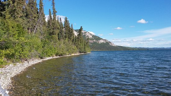 Little Atlin Lodge: lago