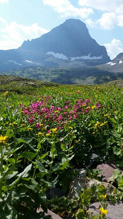 West Glacier, MT: 20160822_104441_large.jpg