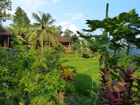 Subak Tabola Villa Photo
