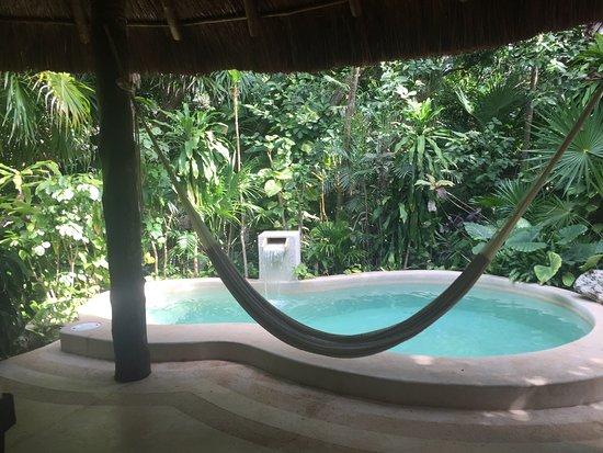 Viceroy Riviera Maya: Superbe piscine particulière au milieu de la jungle