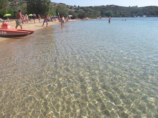 Spiaggia Porto Mannu: Lo spettacolo di Porto Mannu !!!