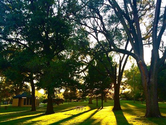 Чампейн, Илинойс: Evening sunlight at Hessel park - Champaign