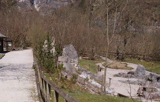 Sospirolo, Włochy: IL PARCO BOTANICO