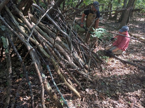 Hedgesville, Virginia Occidental: Building a primitive shelter