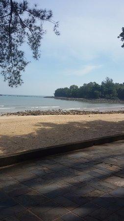 ดาไมบีชรีสอร์ท: strand puur natuur, geen parasols of bedjes