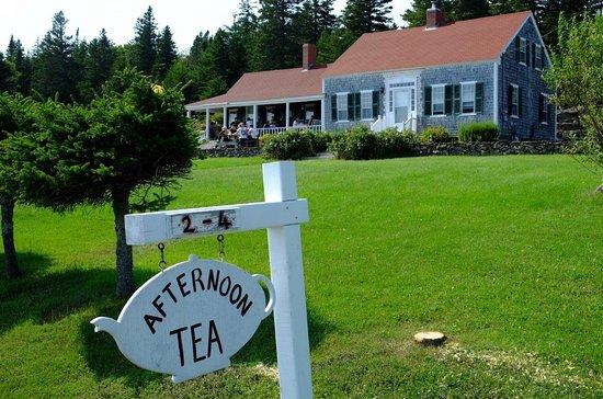 Harrington Cove Tea Room Grand Manan Restaurant Reviews