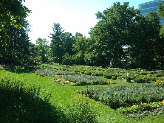 Ann Arbor, MI: Botanical Gardens