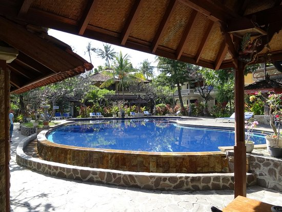 Puri Bali Hotel: DSC05975_large.jpg