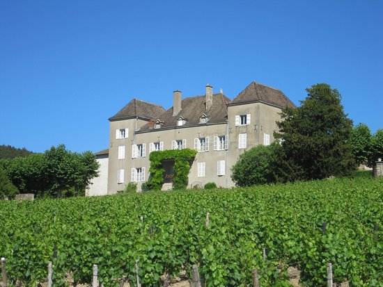 Chateau de la Greffiere
