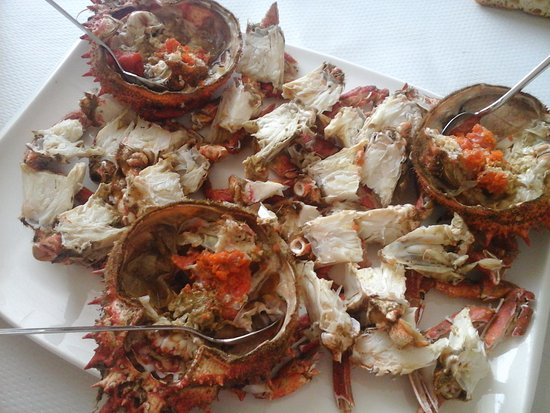 Poio, Spanje: centollo pequenyo (small European spider crab)
