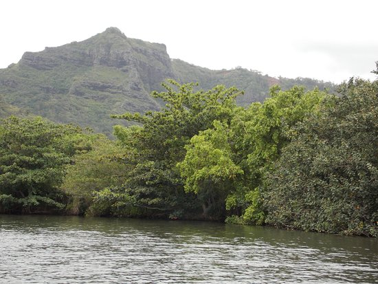 Waimea Canyon: Wailua River Cruise