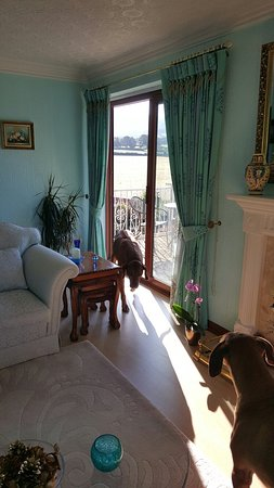 Llandyrnog, UK: Tall Trees Country House B & B