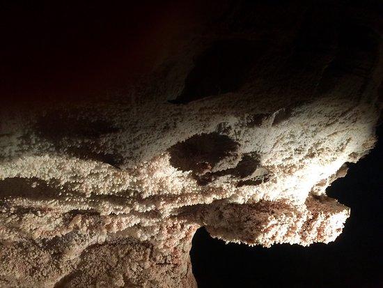 Wind Cave National Park, SD: photo0.jpg