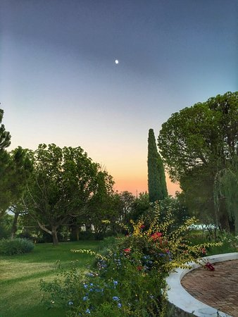 Moncarapacho, Portugal: Sunset garden views