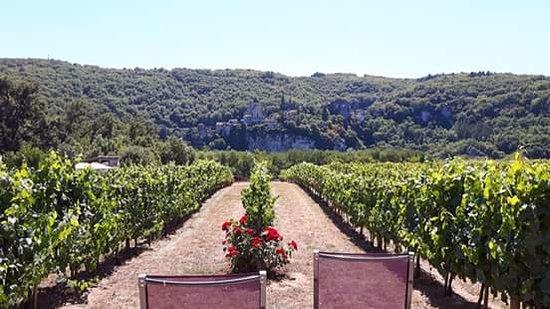 Tour-de-Faure, Γαλλία: Vue de la terrasse de la chambre St Cirquoise