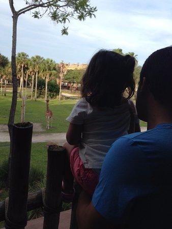 Disney's Animal Kingdom Villas - Kidani Village: Savana, vista do hall do hotel.