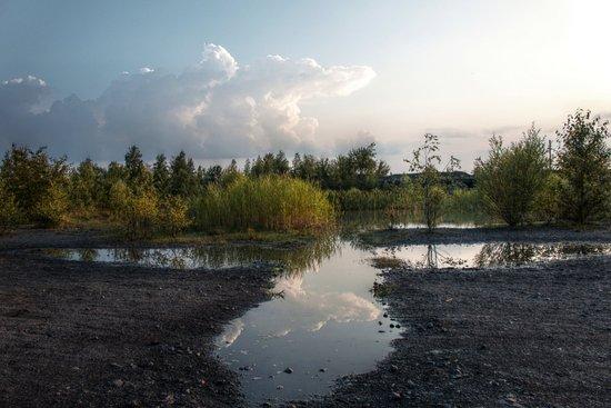 """Quierschied, Alemania: Die Teiche werden auch """"Himmelsspiegel"""" genannt."""
