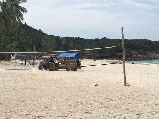 Coral Redang Island Resort: B