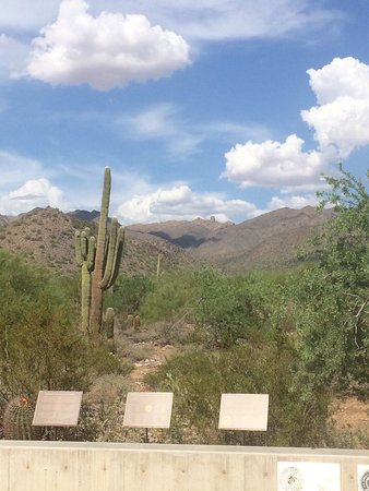 McDowell Sonoran Preserve: photo2.jpg