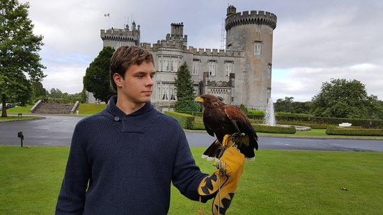 Dromoland Castle Hotel: The Hawk Walk Experience at Dromoland Castle