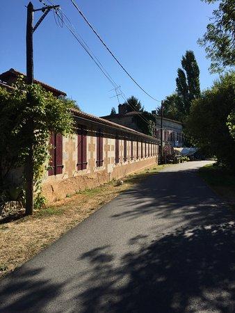 Chateauneuf-sur-Charente, Francia: photo3.jpg