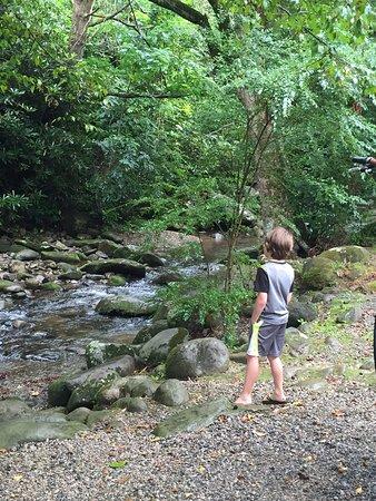 Imagination Mountain Camp-Resort: photo0.jpg