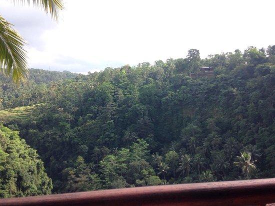 Ayung Resort Ubud: photo2.jpg