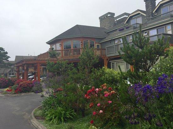 The Flowers at Stephanie Inn