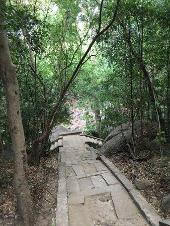 Ritigala Forest Monastery : photo8.jpg