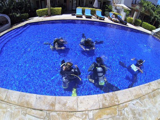 West End, Honduras: Our PADI IDC Instructor Course at RDC