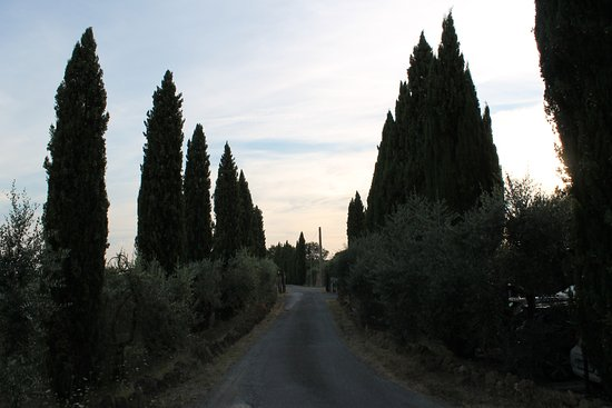 Villa Dini Photo