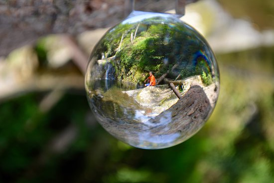 Pocono Environmental Education Center: look into my crystal ball