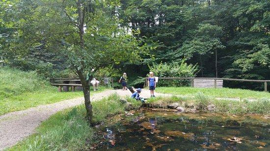 Randboel, Дания: 20160827_150142_large.jpg
