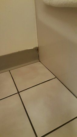 Americas Best Value Inn Sauk Centre: 20160826_155911_large.jpg