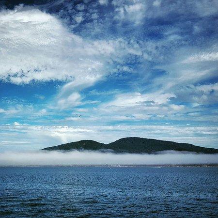 Island Adventures: IMG_20160825_093208_large.jpg