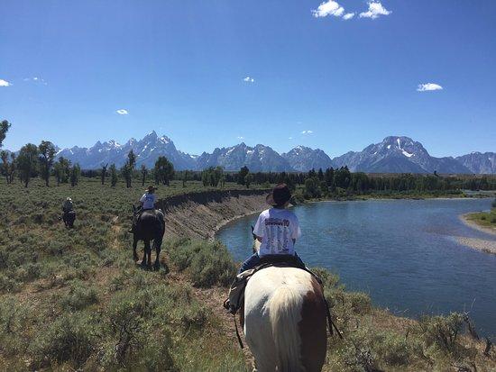Moose Head Ranch trail ride
