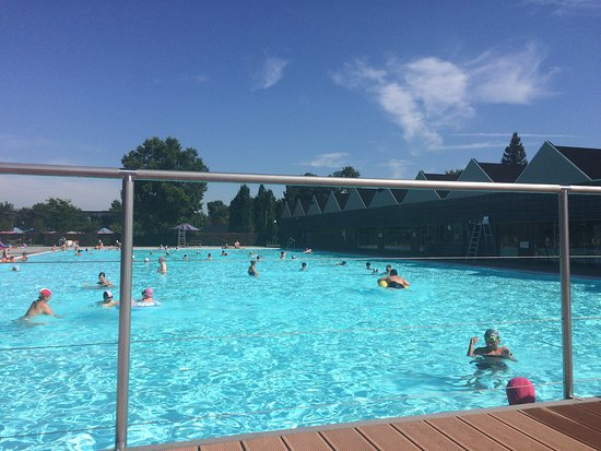 A travers bois photo de domaine provincial de chevetogne for Chevetogne piscine