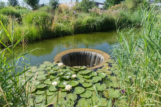 Bassin - Picture of Jardin des Traces, Uckange - TripAdvisor