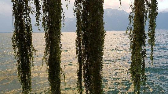 La Tour-de-Peilz, Suiza: Plage De La Maladaire
