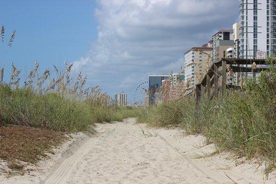 Foto de Carolinian Beach Resort