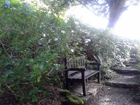 Rydal, UK: Garden